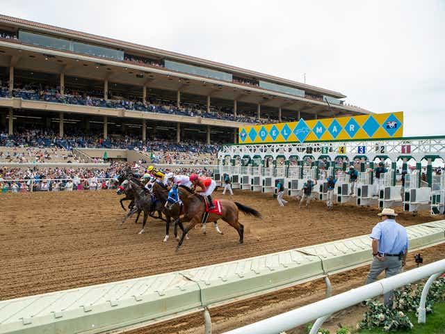 Win at Horse Racing